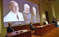 Traja vedci zistili, čo spôsobuje cirhózu a rakovinu pečene. Získanú Nobelovu cenu si však osobne neprevezmú