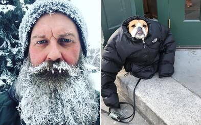 Třeskutá zima v Kanadě a USA dosahuje až -50 °C. Místní ale dokáží projevit dávku humoru