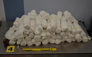 Tři cizinci propašovali do Prahy 142 kilogramů katy jedlé. Jeden policii stále uniká