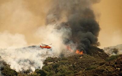 Tritisícročné stromy museli zabaliť do obalov. V Kalifornii sú vzácne sekvoje v ohrození pre rozsiahle požiare