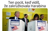 Trump je ako Harabin. Aj ten sa vyhlásil za víťaza bez toho, aby to podporovali výsledky, smejú sa Slováci na internete