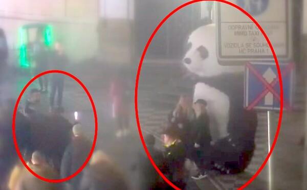 Tunisan dal muži bez domova stokorunu, aby se na ulici v Praze převlékl za pandu a vydělával mu peníze