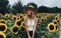 Turisti zničili slnečnicovú farmu kvôli najlepšej selfie. Dotrhali a udupali rastliny ako pri zombie apokalypse