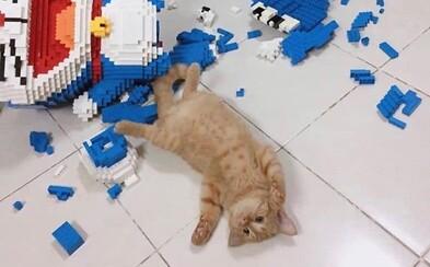 Týždeň mu trvalo poskladať model z 2432 kúskov. Jeho mačka ho rozbila za krátku chvíľu