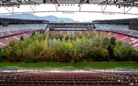 Umělec vysadil stromy uprostřed rakouského stadionu. Lesy jsou podle něj pomalu vymírající umění