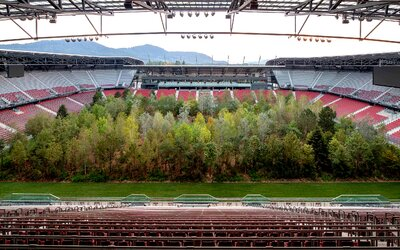 Umelec vysadil stromy uprostred rakúskeho štadióna. Lesy sú podľa neho pomaly umierajúcim umením