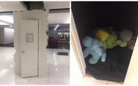 Univerzita dostala budku, kam se studenti mohou jít vyplakat. Mají k dispozici plyšové hračky i úplnou samotu k odstranění stresu