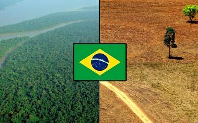 V Amazonskom pralese zrušili rezerváciu o veľkosti Slovenska. Brazília chce dať zelenú ťažbe zlata