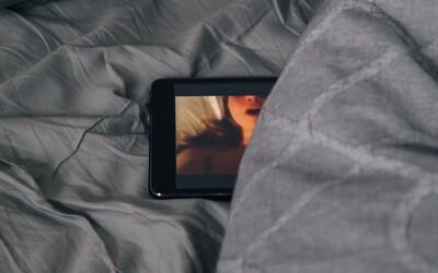 V americkém Utahu chce stát cenzurovat porno, zvedla se proti tomu vlna kritiky