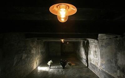 V Arizoně obnovují plynovou komoru. Vězně budou popravovat kyanidem, který se používal i v Osvětimi.