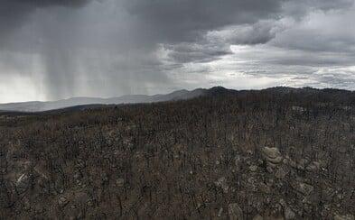V Austrálii konečně prší. Déšť uhasil už 32 požárů