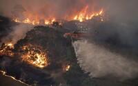 V Austrálii kvôli mohutným požiarom vyzvali na evakuáciu 240-tisíc obyvateľov. Horúčavy pretrvávajú a oheň sa rozširuje