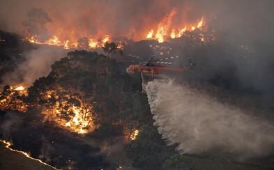 V Austrálii kvůli mohutným požárům vyzvali k evakuaci 240 tisíc obyvatel. Horka přetrvávají a oheň se rozšiřuje