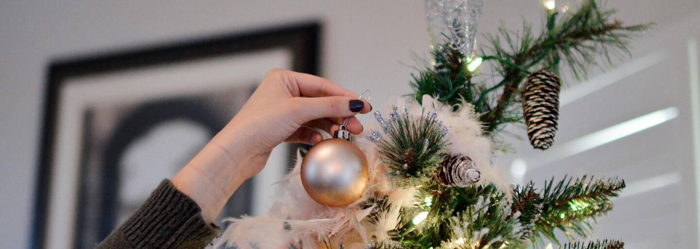 V Bratislave si už môžeš požičať vianočný stromček a po sviatkoch ho zase vrátiť
