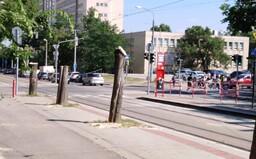 V Bratislave vyrúbali stromy bez povolenia a pobúrený je aj primátor Matúš Vallo. Z centra ubudla vzacná zeleň