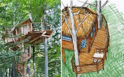 V bratislavských lesoch vznikol ďalší domček na strome! V hustom lese môžeš zažiť i nočné dobrodružstvo