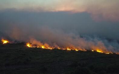V Brazílii opäť horí, tentokrát na juhu krajiny. Rozsiahle požiare ničia najväčšiu mokraď sveta