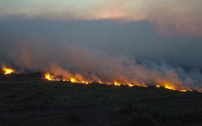 V Brazílii opět hoří, tentokrát na jihu země. Rozsáhlé požáry ničí největší mokřad světa
