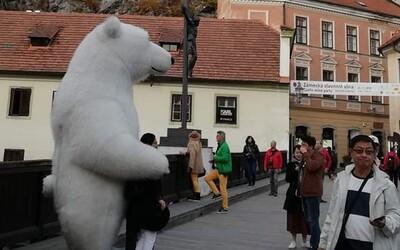 V Českém Krumlově zakázali obří zvířecí kostýmy. Jsou prý nevkusné a do města nepatří