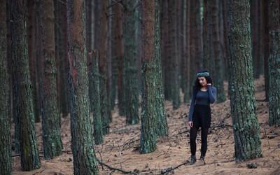 V Česku vysadí 10 milionů stromů. Mají zpomalit dopady sucha a přehřívání měst