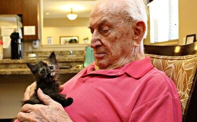V domove dôchodcov bolo veselo. Radosť robili obyvateľom opustené mačiatka