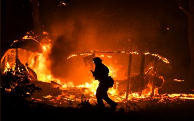 V Kalifornii vyhlásili nouzový stav: Požáry již zničily více než 200 km čtverečních, evakuováno bylo 180 tisíc lidí