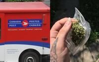 V Kanadě ti pošta doručí marihuanu až před dveře. Díky novému zákonu bude služba legální