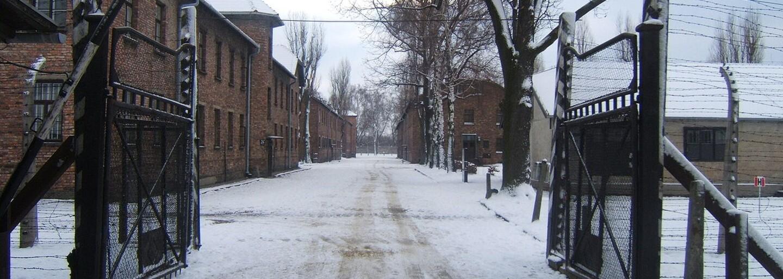 V koncentračním táboře Osvětim existoval nevěstinec, kde byli sexem odměňováni i vězni, pokud nebyli židovského původu