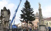 V Košiciach už stojí vianočný stromček. O tom, či budú mať aj trhy, sa rozhodne v najbližších dňoch