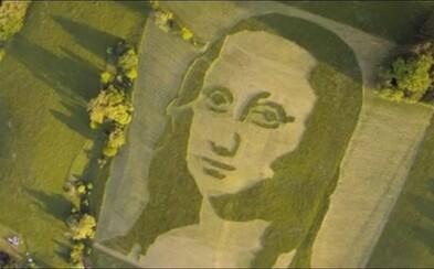 V Královéhradeckém kraji vznikl unikátní portrét Mona Lisy. Má 250x200 metrů a je vysekaný do trávy