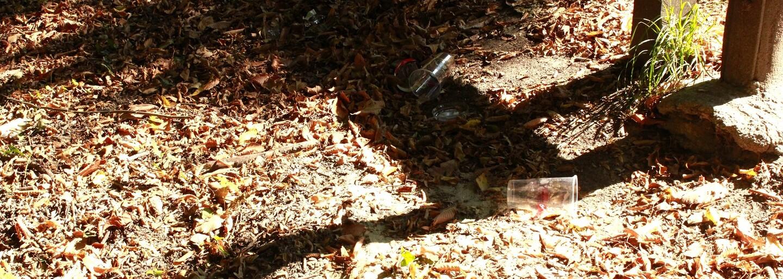 V lese sme vyzbierali plné vrece odpadkov: Bratislavčania bezohľadne zahadzujú fľaše od piva, plechovky a ďalší bordel