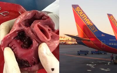 V lietadle niekto zabudol ľudské srdce. Stroj sa vo vzduchu otočil a vrátil späť tam, odkiaľ vzlietol