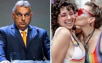 V Maďarsku chcú zakázať adopcie párom rovnakého pohlavia. Opäť navrhujú zmeniť ústavu