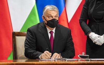 V Maďarsku mají třetí vlnu pandemie. Počet případů výrazně stoupá, tvrdí šéfka Úřadu státní zdravotní služby