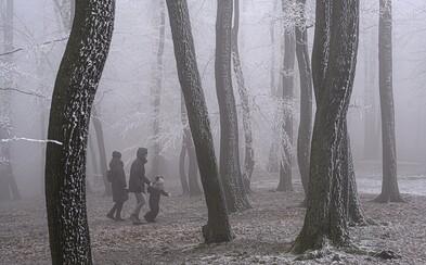 V noci bude na celom Slovensku mrznúť, teploty môžu klesnúť až na mínus štyri stupne