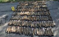 V Nových Zámkoch našli 316 zvieracích končatín. Niekto ich odhodil pri ceste