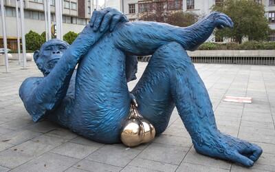 V Praze se objevila modrá opice se zlatými varlaty. Chodí se s ní fotit turisté z celého světa