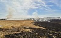V Praze začalo hořet pole, na místo přijela i vojenská jednotka. Hasiči už mají plameny pod kontrolou