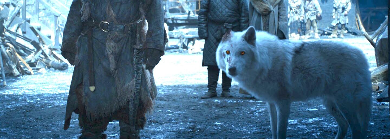 V prequelu Game of Thrones uvidíme Starky, zlovlky i White Walkers
