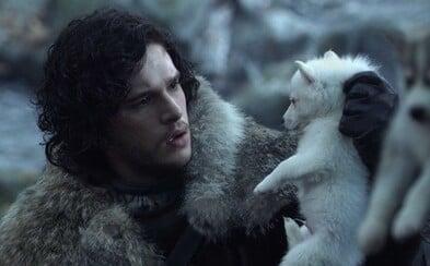 V prequeli Game of Thrones uvidíme Starkovcov, zlovlkov aj White Walkers