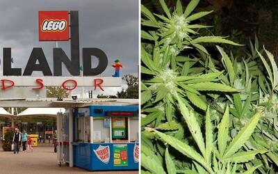 V zábavnom parku Legoland sa našla farma na pestovanie marihuany. Viac než 50 rastlín malo aj automatický zavlažovací systém