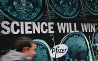 Vakcíny Pfizer by mohly do Česka dorazit ještě letos. Prvních téměř 10 000 dávek už 28. prosince