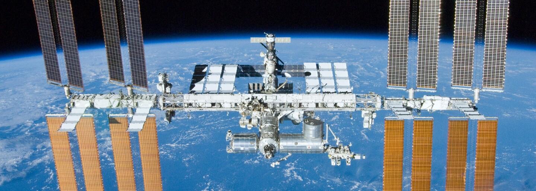 Ve vesmíru vykvetla první květina! Astronauti se podělili o historický moment z paluby stanice