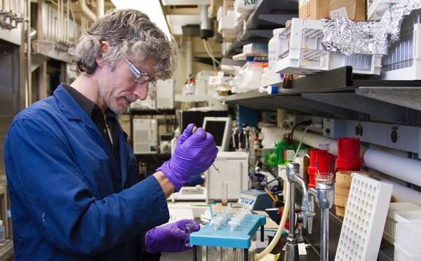 Vědci objevili buňku, která by mohla léčit všechny druhy rakoviny, testovat na lidech by chtěli už koncem roku 2020