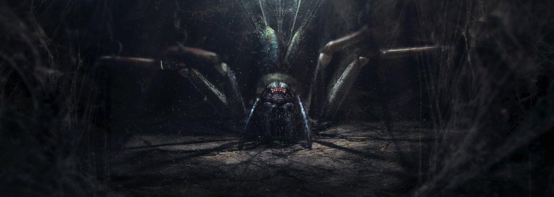 Vedci skúmali pavúčie skoky a následne vytvorili aj malého robota na základe zistených poznatkov