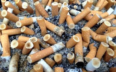 Vedci tvrdia, že cigarety s filtrami by sa mali úplne zakázať. Fajčiarom nepomáhajú a ničia životné prostredie