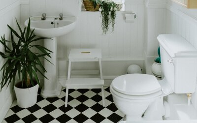 Vedci vymysleli špeciálny sprej na záchodové misy. Pri ich čistení postačí menej vody na to, aby sa všetok obsah spláchol
