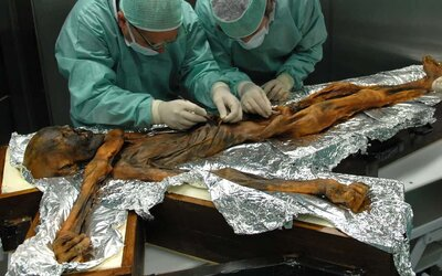 Vědci zjistili, co si před 5000 lety vychutnal jako poslední jídlo Ötzi