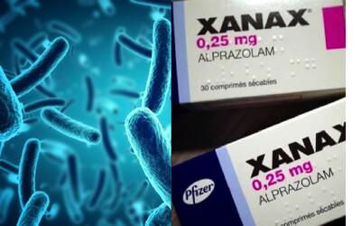 Vědci zkoumají vakcínu, která může zabránit stresu, úzkostem a depresi