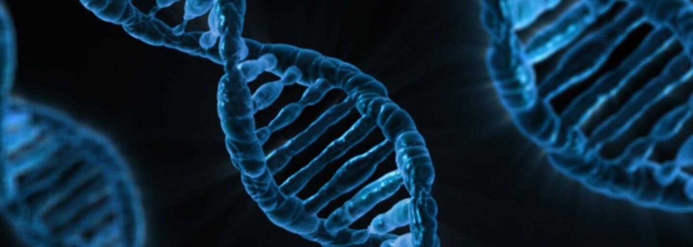 Vědcům se podařilo upravit dítě ještě před narozením. Poprvé úspěšně změnili geny lidského embrya